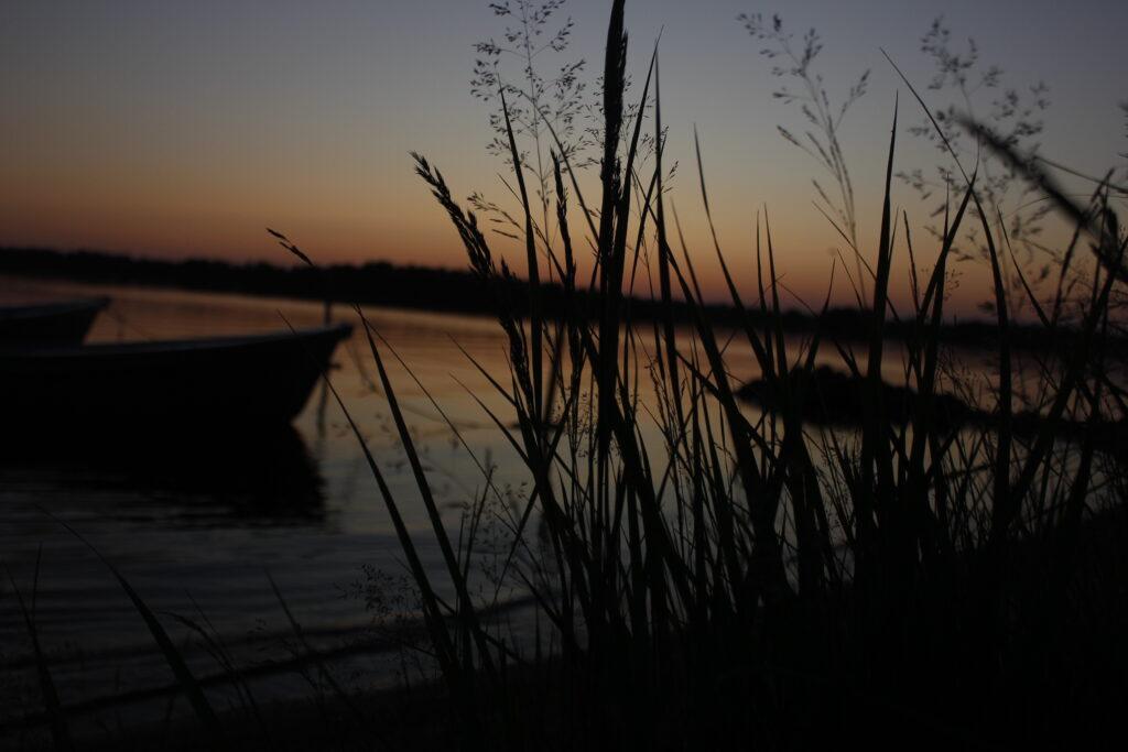 Strån vid sjön